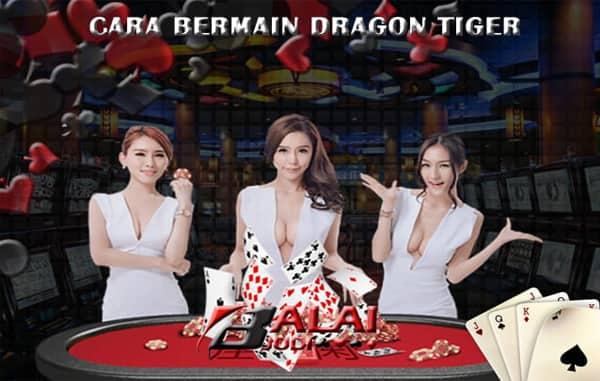 Cara Bermain Dragon Tiger Online Balaijudi