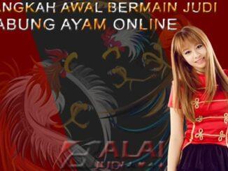 Judi Sabung Ayam Online - Balaijudi